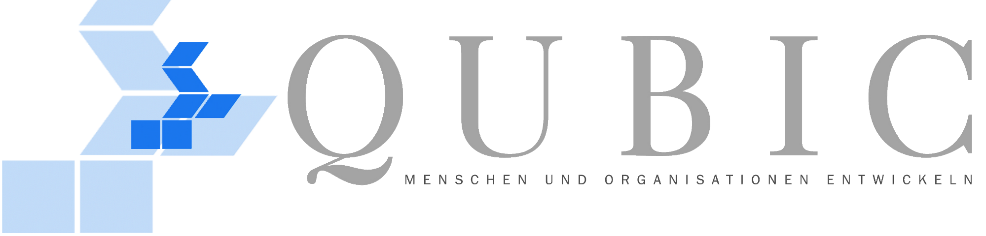 QUBIC Beratergruppe GmbH